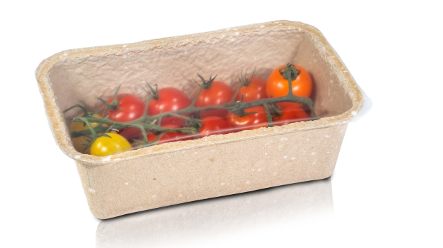 Tomatoes Cherry on Vine Pulp Tray Photo - Proseal